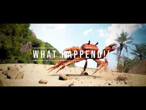 One last Crab Video