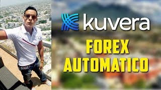 Kuvera Forex automatico multiplica dinero rapido y sencilo  EVO Movement