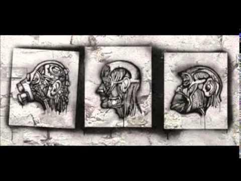 W.A.S.T.E - Mediaface (Synapscape remix)
