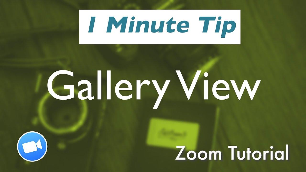 ビュー Iphone zoom ギャラリー