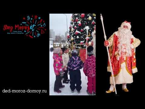 Поздравление Деда Мороза и Снегурочки на улице