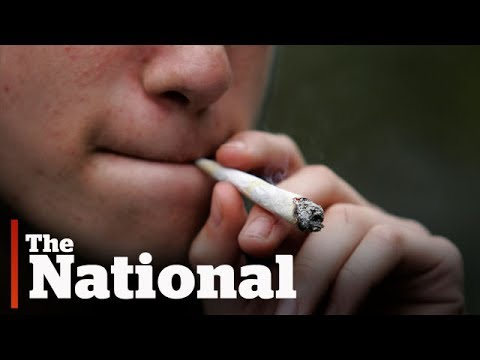 Medical journal warns of pot risk to youth