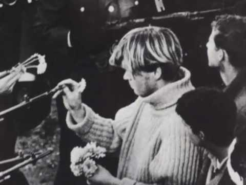 Image result for hippies rose and gun