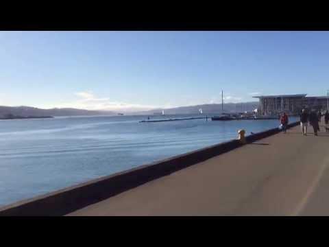 Una mañana soleada en el Waterfront de Wellington