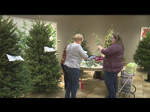 Local volunteers decorate dozens of Christmas trees at Davis Center