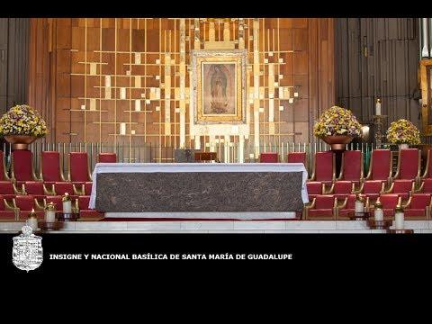 Peregrinación de la Arquidiócesis de Guadalajara, 12 de abril de 2018, 11:00 hrs,