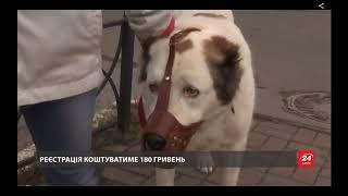Как будет действовать законопроект о регистрации домашних животных в Украине