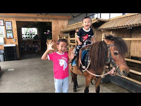 Zara Kenzo naik Kuda di Gedung Lantai 10   Horse Riding for Kids at Mini Zoo