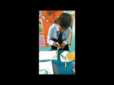 SAGAR SCHOOL - EXPO   1