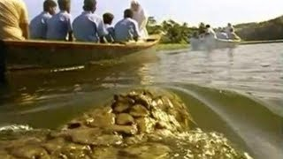 УЖАСЫ !!! Крокодил переворачивает лодку с детьми