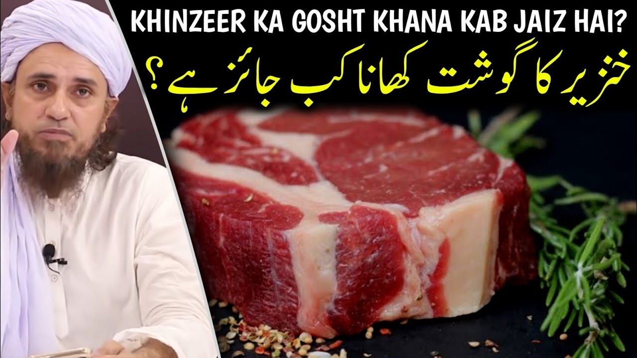 Khinzeer (Pig) Ka Gosht Khana Kab Jaiz Hai | Mufti Tariq Masood | @Islamic YouTube