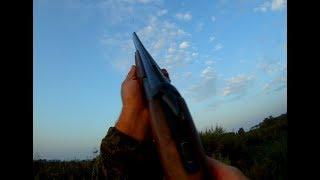 Открытие охоты на утку 2017/Duck hunting 2017 18+