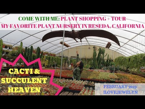 Come with me: Plant shopping + tour   Reseda, CA    Feb 2019   ILOVEJEWELYN