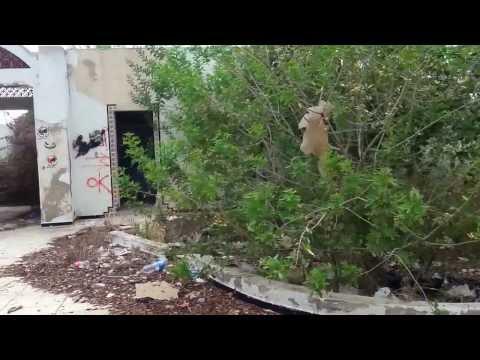 TUNISIE  RACISME  : REVOLUTION & HOURIA ZINE EL ABIDINE BEN ALI 2011 MOFIDA HAMROUNI 3