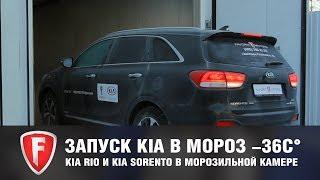Запуск Kia Rio и Kia Sorento Prime в мороз -36 градусов. Испытание автомобилей в морозильной камере