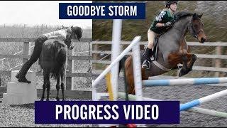 Goodbye Storm - Progress video