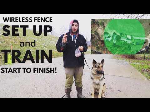 How To Setup and Train A Dog To a Wireless Invisible Fence (PetSafe Stay and Play)