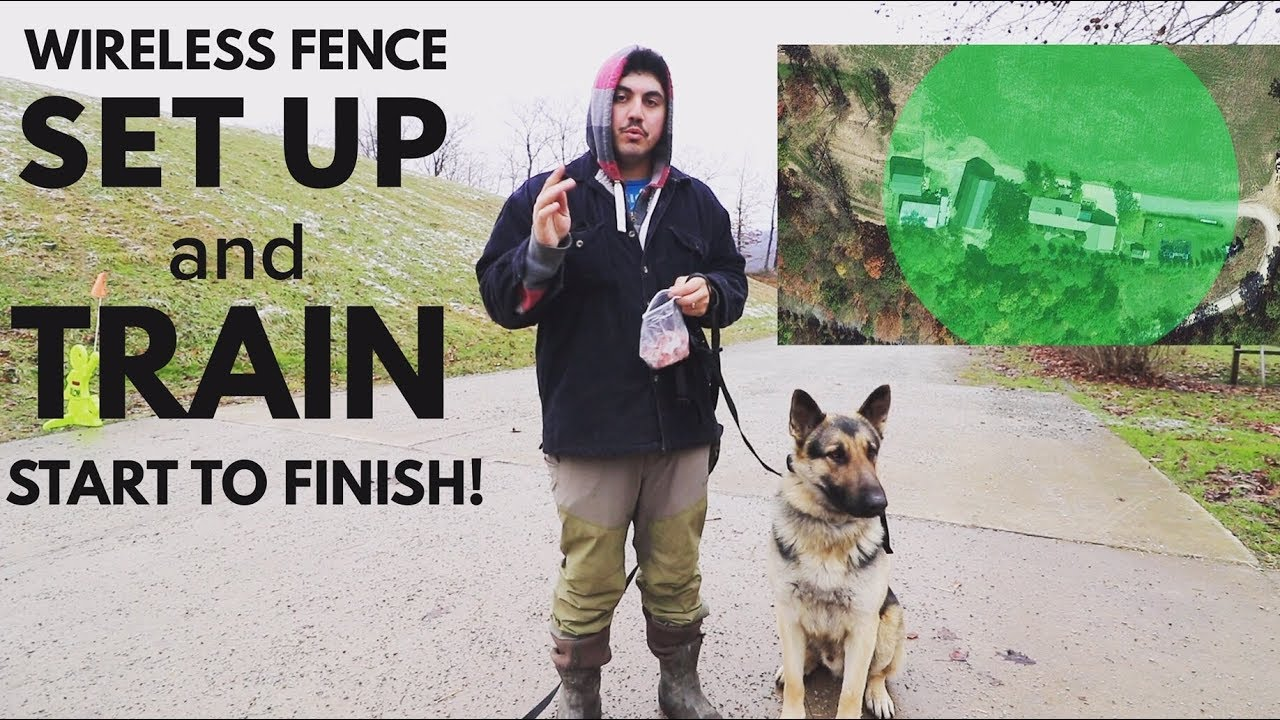 How To Setup And Train A Dog To A Wireless Invisible Fence Petsafe Stay And Play Youtube
