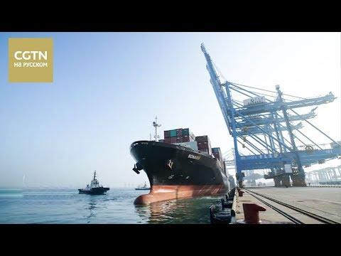 видео: В Циндао запустили полностью автоматический контейнерный терминал[age0+]