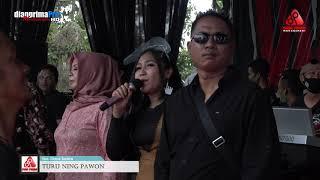 Download TURU NING PAWON   DIANA SASTRA