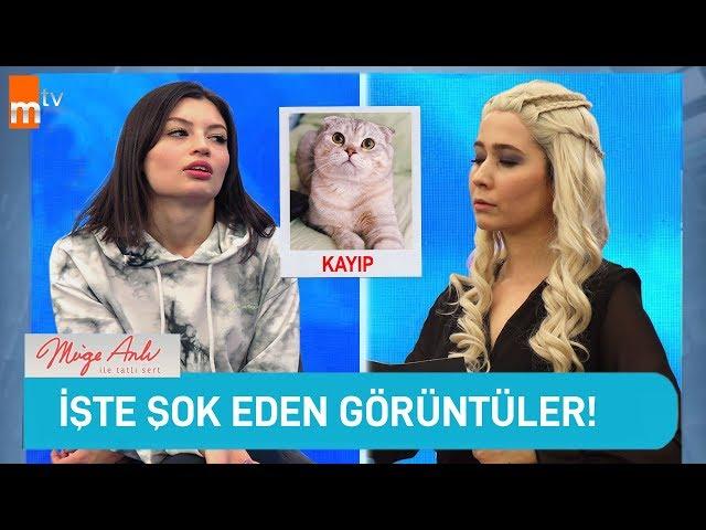 HAYATI TELEVİZYON PROGRAMI GİBİ YAŞAMAK!!!