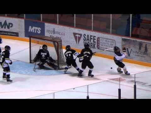 AAA Hockey Challenge - Renegades Vs Sask Jr Clippers