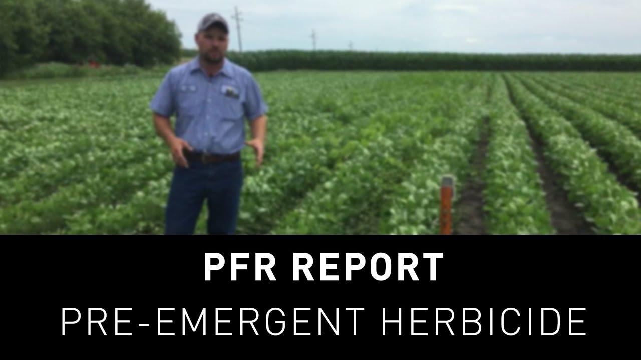 pfr report preemergent herbicide study - Preemergent Herbicide