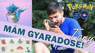 EVOLVE GYARADOS, PERSIAN, POLIWRATH + 50.000 XP | POKÉMON GO #3