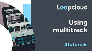 Multitrack - Loopcloud 5 Tutorial