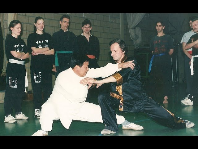 Grandmaster Walter Toch with Taiji Chen as selfdefense 2015 in his kwoon Belgium