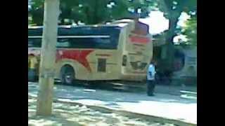 Blue Bird (a servicio de Cootracegua) Buses Colombianos