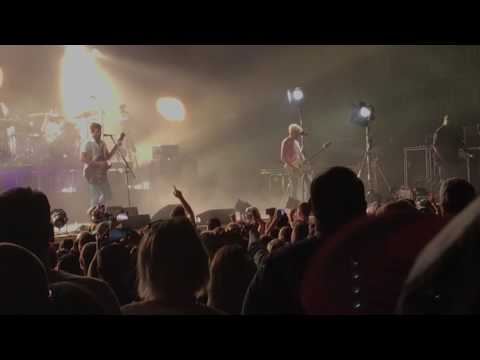 The Immortals - Kings of Leon live!