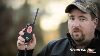 Dt Systems H20 Plus Dog Training Collars Review - Sportingdogpro.com