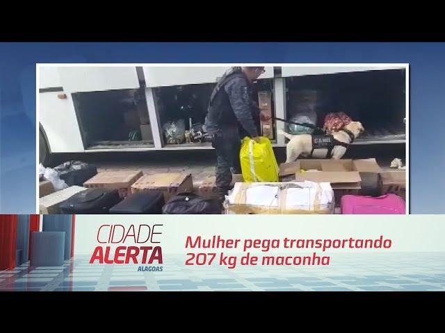 Presa no ônibus mulher pega transportando 207 kg de maconha