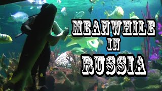 Meanwhile in Russia Compilation || Funny Videos