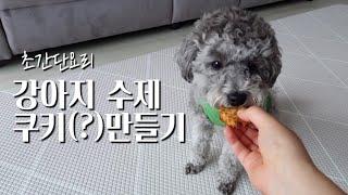 강아지 초간단 수제쿠키 만들기(사료,야채먹이기)