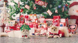 KitKat Wish You A Merry Christmas (...