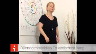 Video Muskeltanz Touch for Health  14 Hauptmuskeln download MP3, 3GP, MP4, WEBM, AVI, FLV Juli 2018