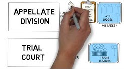 New York Criminal Appeals Process: What A New York Criminal Appeals Lawyer Should Know.