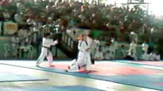 Philippine Taekwondo Association Demo Team