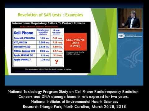 Dr. Marc Arazi National Toxicology Program Study Comments.
