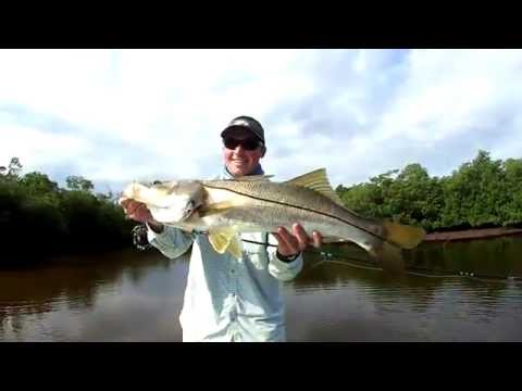 Fly Fishing Miami Tarpon And Snook Everglades Spring 2016