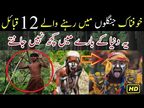 Jungle Mein Rehnay Wale 12 Qabail Tribes...