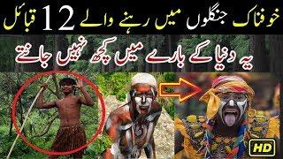Jungle Mein Rehnay Wale 12 Qabail Tribes Documentary Urdu Hindi