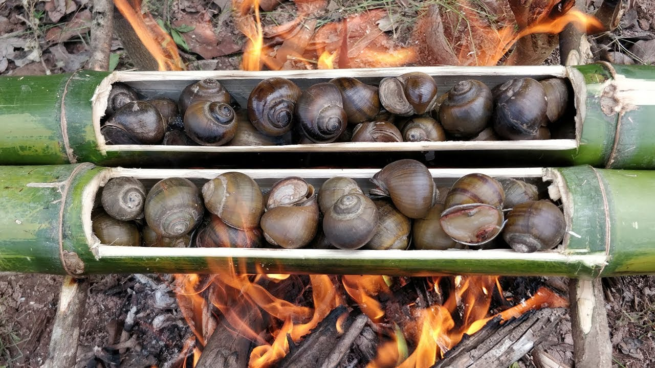 Smartest Idea for Cooking Freshwater Snails
