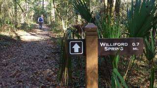 Williford Sylvan nature trail on Econfina Creek