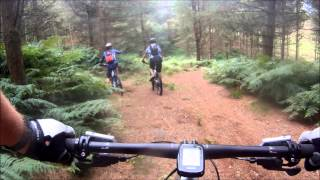 Senior Citizens Mountain Bike Tour of Cannock Chase +1