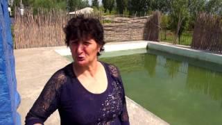 Азербайджан    Обзор Eyrichay Hotel    Едем в Гах    Прощай Шеки