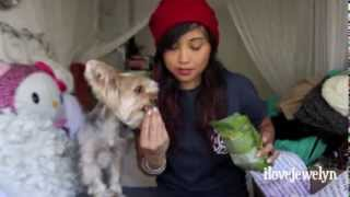 December 2013 and January 2014 Barkbox Unboxing Thumbnail