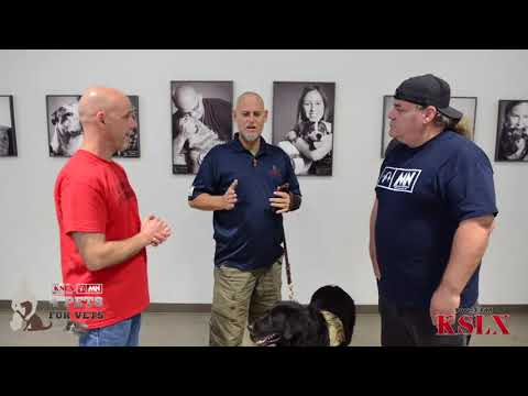 Mark & NeanderPaul Present 4 Pets For Vets